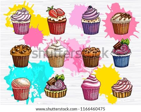 bc01259ee0cc Cupcakes Vectors - Download Free Vector Art, Stock Graphics & Images