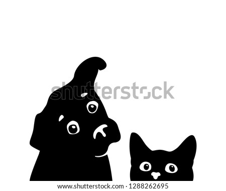 curious cat and dog muzzles
