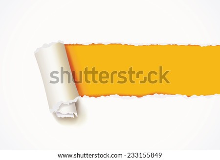 Curl of white paper. Torn paper. Infographics elements in the form of paper tape for various purposes. Vector illustration. Isolated on white background