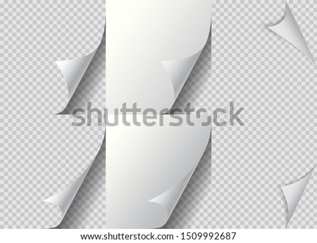 Curled page paper corner set. Paper fold, curve flip corner and papers curls angle. Flipping book page, bent border of notepad. Leaf sticker with curl effect. Isolated vector eps10