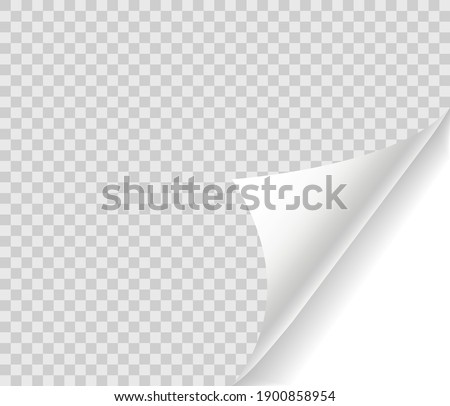 Curled page with shadow on blank sheet of paper. Page curl realistic paper mock up. Design element for advertising and promotional. Vector illustration.
