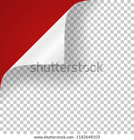 Curly Page Corner realistic illustration with transparent shadow. Vector illustration.