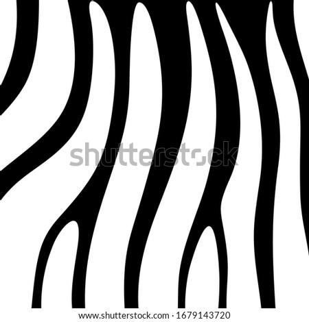 curved stripes pattern zebra