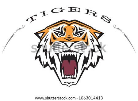 Custom, ferocious, 3 color tiger head illustration. Word TIGERS arching over head. This vector art is great for tiger team mascot, spirit gear, t-shirts, hoodies, die cast pins, banners, sport gear.
