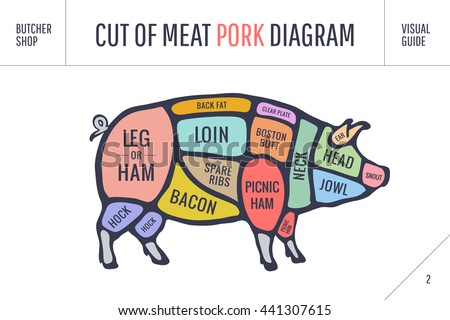 hog meat cuts download free vector art stock graphics images rh vecteezy com Pig Butcher Diagram Print Diagram for Cutting Up a Pig