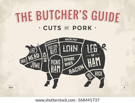cut of meat set poster butcher diagram scheme and guide pork  : butcher diagram - findchart.co