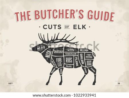 Cut of meat set. Poster Butcher diagram, scheme - Elk. Vintage typographic hand-drawn elk silhouette for butcher shop, restaurant menu, graphic design. Meat theme. Vector Illustration