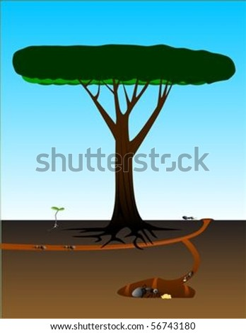 Cutaway view of ant colony near an old tree and seedling. EPS contains various elements in their own layers.