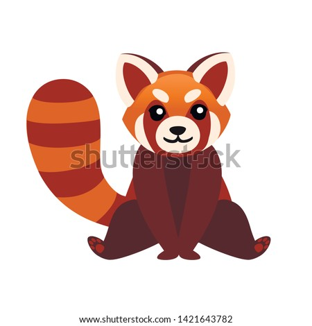 cute adorable red panda sit on