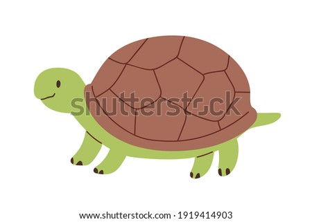 Cute and funny green turtle with brown shell. Side view of happy tortoise character standing isolated on white background. Childish colored flat vector illustration Stock photo ©