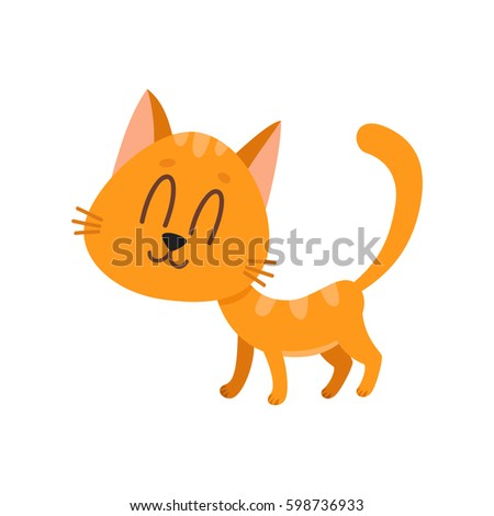 cute and funny sweet red cat