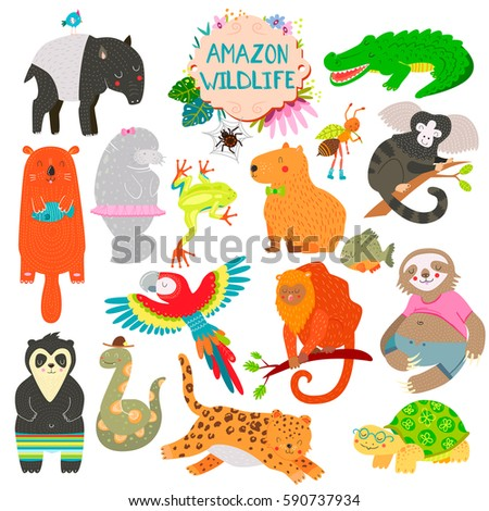 cute animals collection  baby