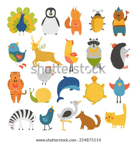 Cute animals collection, baby animals, animals vector. Cat, peacock, penguin, beetle, bear, bird, deer, raccoon, hedgehog, dolphin, heron, tortoise, zebra, dog, snail isolated on white background
