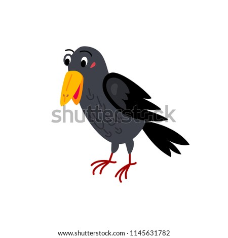 cute animals   raven