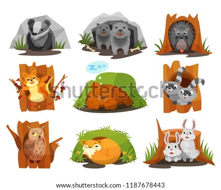 Cute animals sitting in burrows and hollows set, badger, wolves cubs, hedgehog, squirrel, bear cub, raccoon, owlet, fox, hares inside their homes vector Illustration