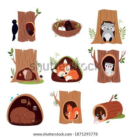 Cute Animals Sitting in Burrows and Tree Hollows Vector Set Foto stock ©