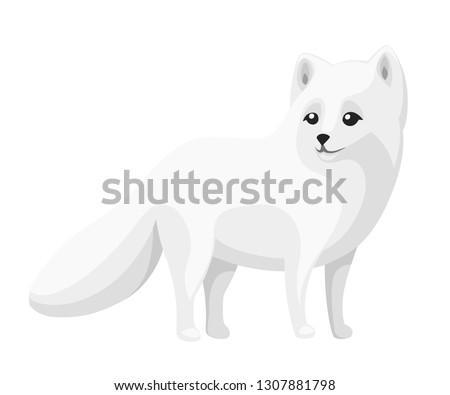 cute arctic fox cartoon animal