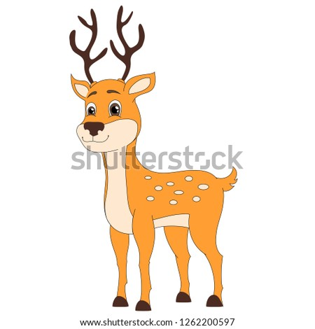 Cute baby deer, woodland, forest animal.