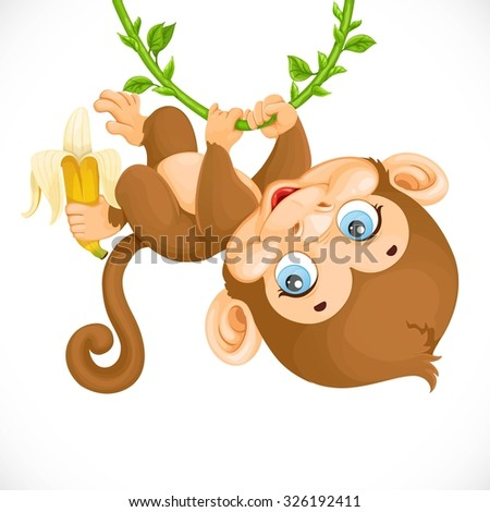 stock-vector-cute-baby-monkey-with-banana-hanging-on-the-vine-isolated-on-a-white-background