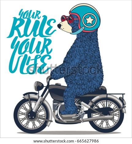 cute bear on motorcycle vector