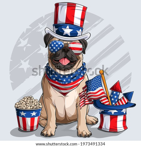 Cute beige Pug dog sitting with American independence day elements 4th of July and memorial day  Foto stock ©