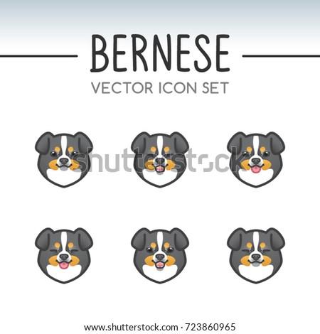 cute bernese mountain dog breed