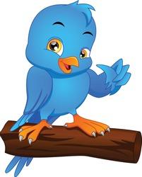 cute bird cartoon thumbs up