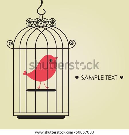 Cute bird in birdcage