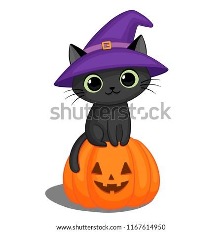 Cute black cat in a witch hat sitting on a Halloween pumpkin