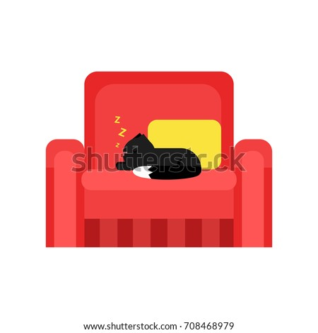 cute black cat sleeping on a