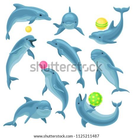 cute blue dolphins set  dolphin