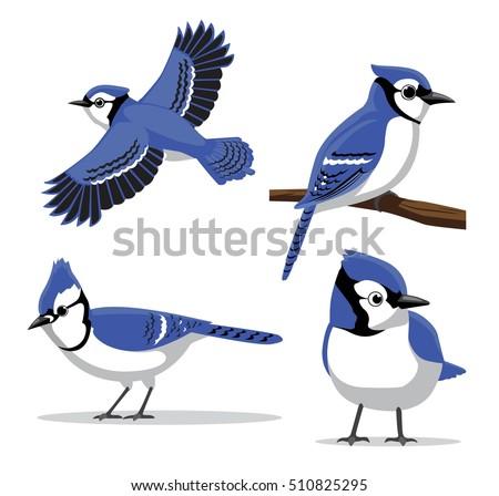 cute blue jay poses cartoon