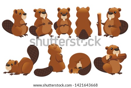 Cute brown beaver icon collection. Cartoon character design. North American beaver Castor canadensis. Rodentia mammals. Happy animal. Flat vector illustration isolated on white background