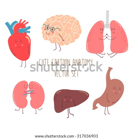 cute cartoon anatomy vector set