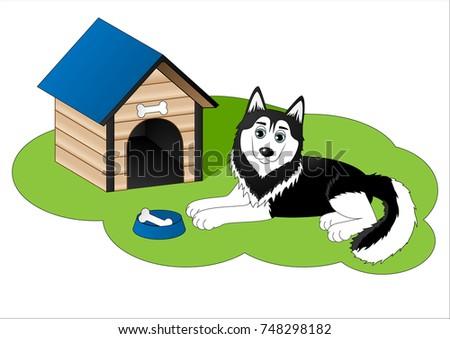 cute cartoon husky next to dog