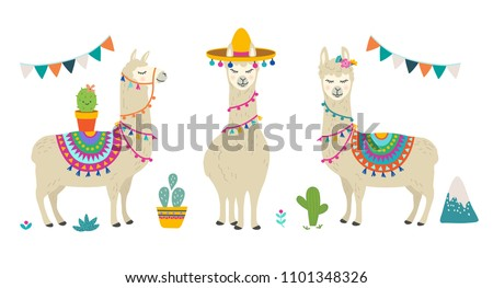 Cute cartoon llama alpaca vector graphic design set. Hand drawn llama character illustration and cactus elements for nursery design, poster, greeting, birthday card, baby shower design and party decor