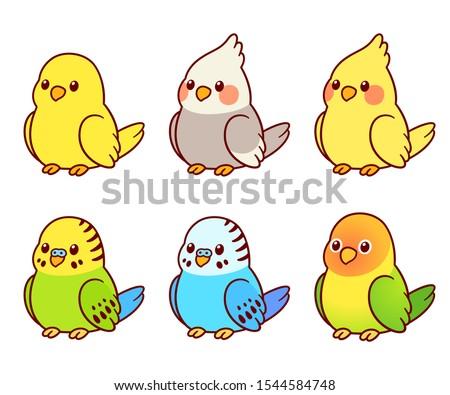 cute cartoon pet birds