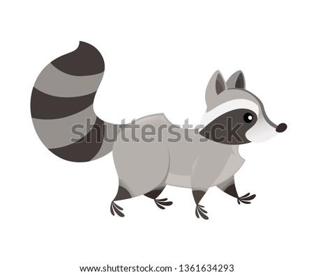 cute cartoon raccoon walk  side