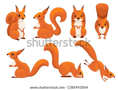 Cute cartoon squirrel set. Funny little brown squirrel collection. Emotion little animal. Cartoon animal character design. Flat vector illustration isolated on white background.