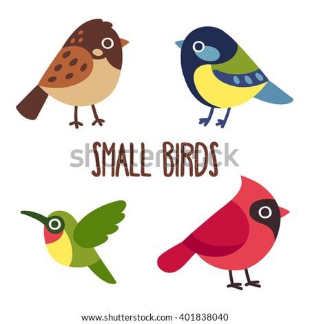 cute cartoon wild birds set