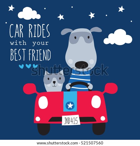 cute cat and dog in the car