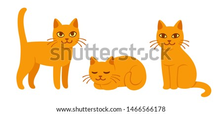 cute cat drawing set in