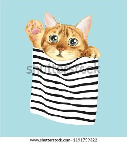 cute cat in stripe pocket