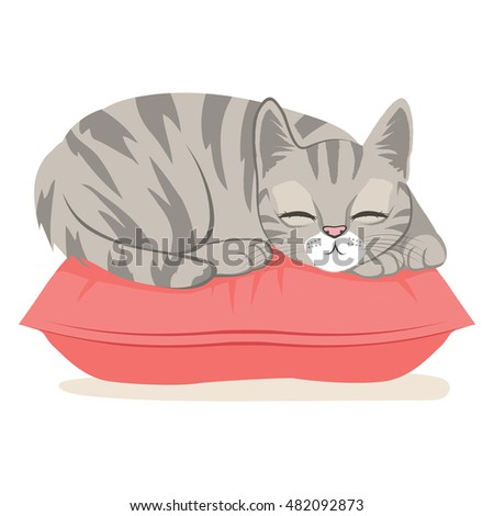 cute cat on a pink pillow