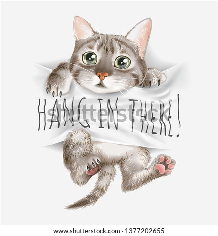 cute cat on hang in there sign