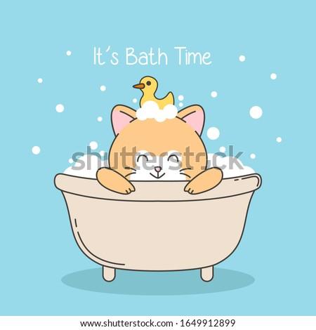 cute cat take a bath with duck