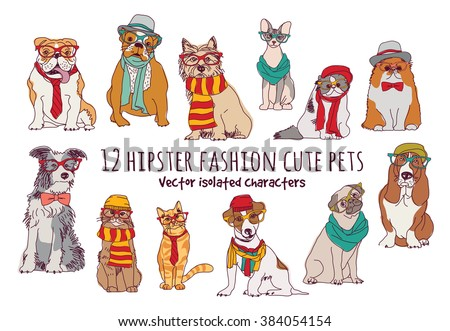 cute cats and dogs fashion