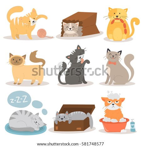 cute cats character different