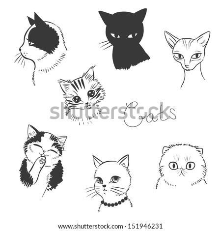 cute cats vector illustration