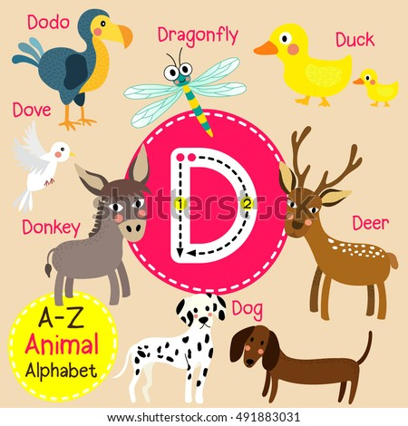 cute children zoo alphabet d